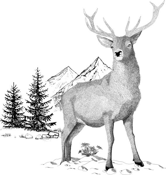Gezeichneter Hirsch steht vor Bergkulisse